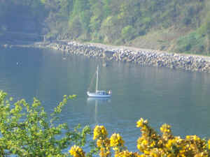 Torquay holiday cottage - Babbacombe Bay